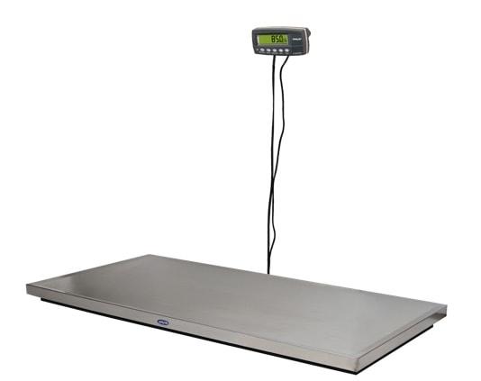 K9W8 Scales