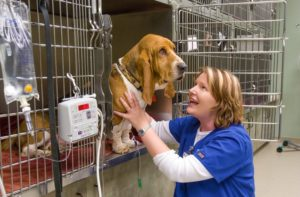 Tech takes care of patient in Shor-Line cage