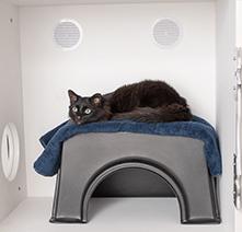 Ventilation for Feline Comfort Suite, Passive